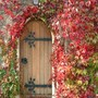 Autumn Door