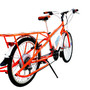 el Mundo electric bicycle