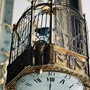 Bird cage clock