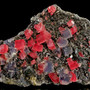 Deep red Rhodochrosite rhombs perfectly matched with Violet zoned Fluorite cubes with Quartz