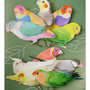 Greeting_Life/Message_of_birds/