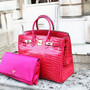 birkin/bright bag.