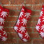Plantlife Christmas Stocking