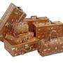 """The Darjeeling Limited"" Luggage Collection"