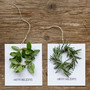 diy mini wreath holiday cards