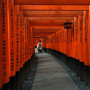 Japan - the red gates of Fushimi-inari