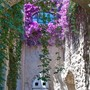 Arch of flowers at Castello Aragonese • photo: Stuart Jack