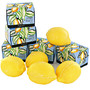 savon citron