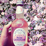 Rose Lemonade